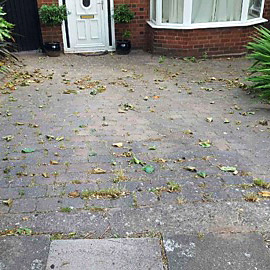 Weeds & Grime in the Drive